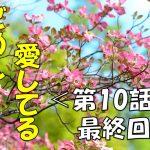 【2017感動ドラマ】ごめん愛してる第10話(最終回)の動画を無料で見るには??再放送予定は??